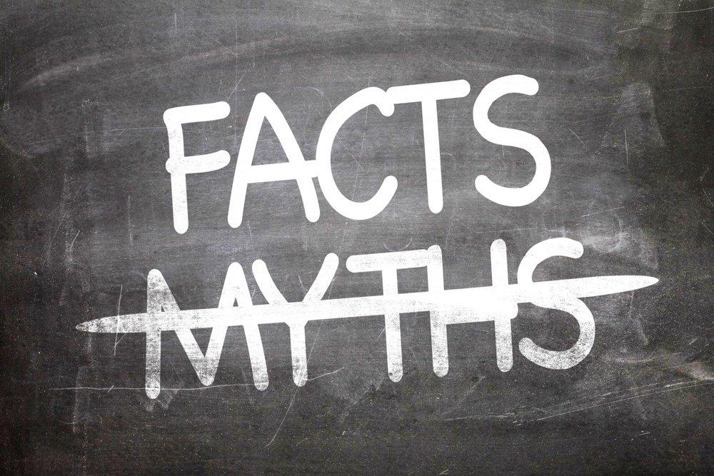 Facts Myths About Productivity.jpeg