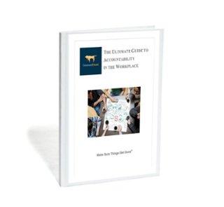 Skewed Accountability eBook (1).jpg
